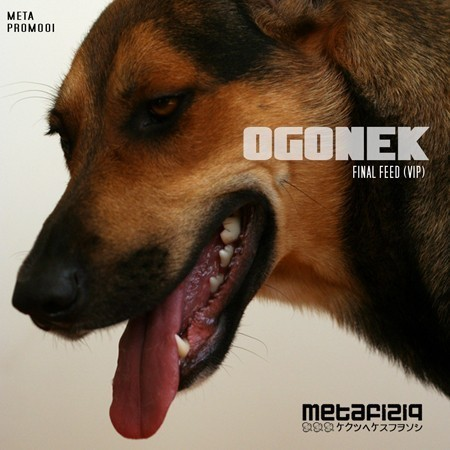 METAPROMO01 OGONEK - Final Feed (VIP)